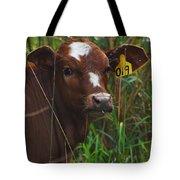 Calf Nineteen Tote Bag
