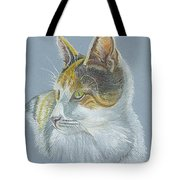 Calico Callie Tote Bag