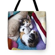 Calico Kitten On Towels Tote Bag