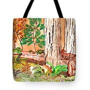 Calif. Redwoods Tote Bag