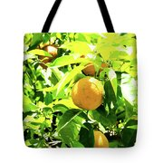 California Bright Orange Fruit Tree In Downtown Sacramento In Ca Tote Bag