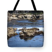 California Coast Tote Bag