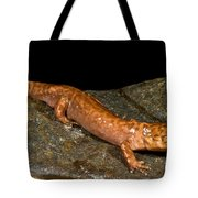 California Giant Salamander Tote Bag