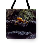 California Newt 2 Tote Bag