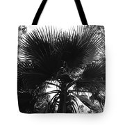 California Palm Tree Tote Bag