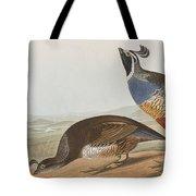 California Partridge Tote Bag