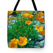 California Poppie In River Rock Tote Bag