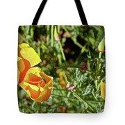 California Poppies In Mariposa, California Tote Bag