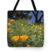 California Poppy Eschscholtzia Tote Bag