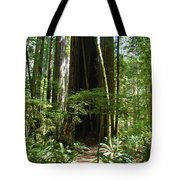 California Redwood Trees Forest Art Tote Bag