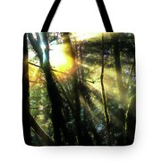 California Redwoods Tote Bag by Richard Ricci