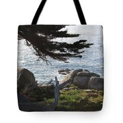 California Shade Tote Bag