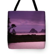 California, Sonoma Coast Tote Bag
