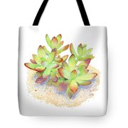 California Sunset Succulent Tote Bag