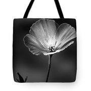 Californian Poppy Tote Bag
