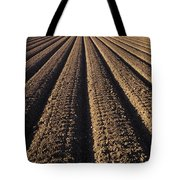 Califronia, View Tote Bag