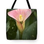 Calla In The Mist Tote Bag