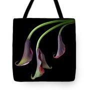 Calla Lilies Take A Bow Tote Bag