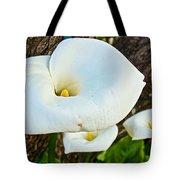 Calla Lily At Carmel Mission-california Tote Bag