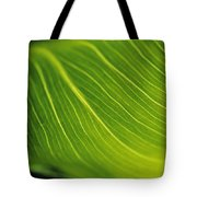 Calla Lily Leaf Tote Bag