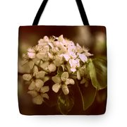 Callery Pear Blossoms Tote Bag