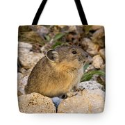 Calling All Pica Tote Bag