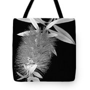 Callistemon Beauty 1 Tote Bag