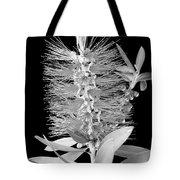 Callistemon Beauty 5 Tote Bag
