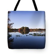Calm On The Pond Tote Bag