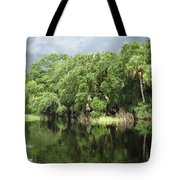 Calm River Reflections Tote Bag