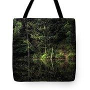 Calm Waters Tote Bag