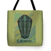 Calymene Niagarensis Tote Bag