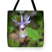 Calypso Orchid Tote Bag