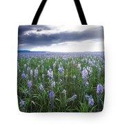 Camas Marsh 2 Tote Bag
