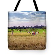 Cambodia Field Workers Harvesting Rice Tote Bag