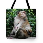 Cambodia Monkeys 2 Tote Bag
