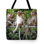 Cambodia Monkeys 7 Tote Bag
