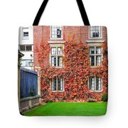 Cambridge 2 Tote Bag