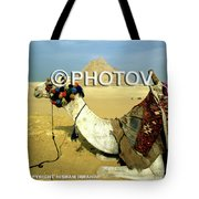 Camel And The Great Pyramids Of Giza - Egypt Tote Bag