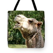 Camel Chewing Tote Bag