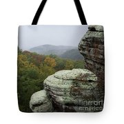 Camel Rock Tote Bag