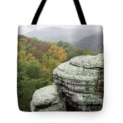 Camel Rock Close Up Tote Bag
