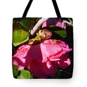 Camellia Light And Bud Tote Bag