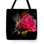Camellia Silhouette  Tote Bag