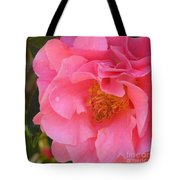 Camellias Of The South Tote Bag