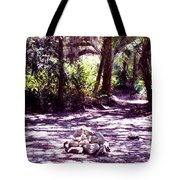 Camp Fire Past Tote Bag
