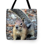 Campground Chipmunk Tote Bag