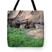 Can I Come Out? Tote Bag