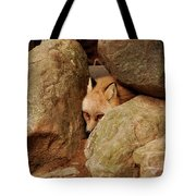 Can I Come Out Yet Tote Bag