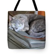 Can I Come With You Tote Bag